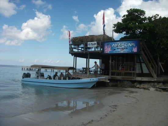 Anemona Divers: Our Dive Shop