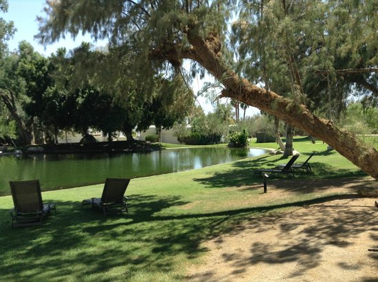 Two Bunch Palms : Beautiful grounds