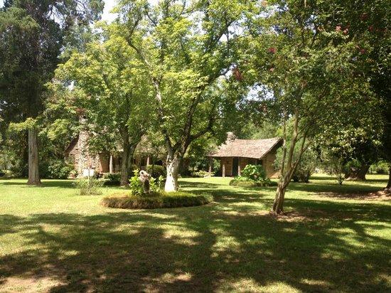 Melrose Plantation: The beautiful grounds