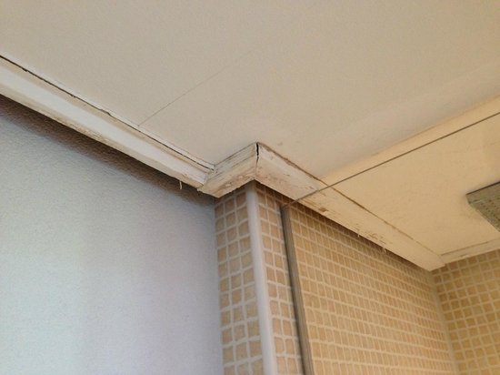 Scandic Front: Bathroom ceiling
