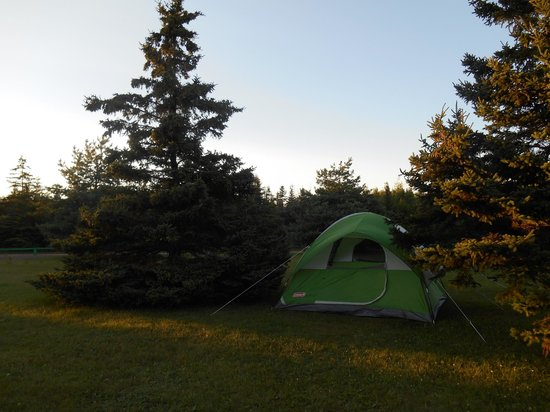 Cedar Dunes Provincial Park: Pitch #3