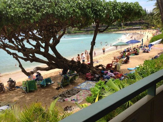 The Napili Bay : Gets a little crowded at noon. You are right on the beach.