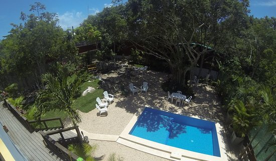 Mango Tulum Hotel: Mango Pool and Garden