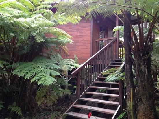 Volcano Village Lodge: Outside