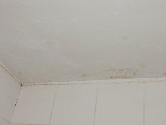 Cusco Plaza Nazarenas: Infiltração no teto do banheiro.