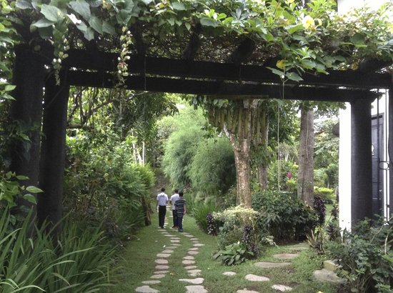 Nurture Wellness Village: serene atmosphere