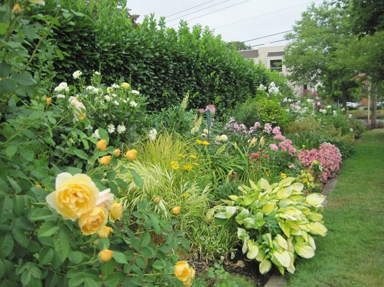 Deepwood Museum & Gardens : Lovely garden