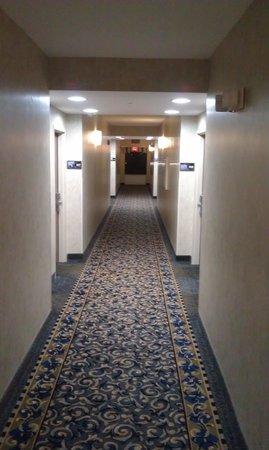 Hampton Inn & Suites Savannah - I-95 S - Gateway : 4th Floor Hallway