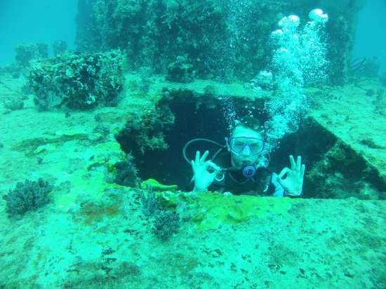 Ecodiving Tours: Wreck Dive