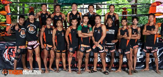 Photo of Tourist Attraction Tiger Muay Thai - Day Classes at 7/6 หมู่ 5 ซอยตาเอียด, Chalong 83100, Thailand