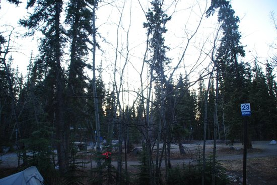 Robert Service Campground : Campground