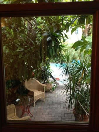 Tropical Inn: View from our bed of our own little tropical oasis!