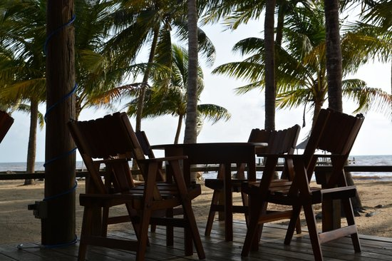 Pelican Beach - Dangriga: restaurant