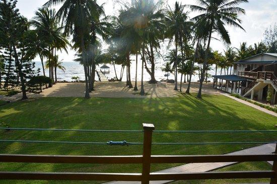 Pelican Beach - Dangriga : grounds from balcony