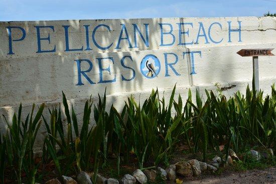 Pelican Beach - Dangriga : sign