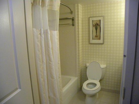 Hilton Garden Inn Dover: Bathroom