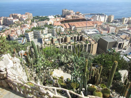 The view picture of exotic garden jardin exotique la for Boulevard du jardin exotique monaco