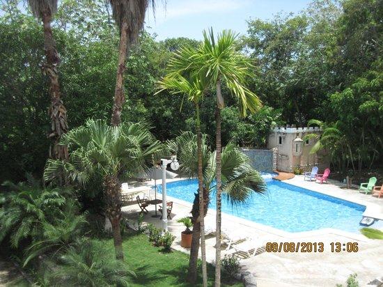 Casa las Palmas Hotel Boutique: vista desde la habitacion, un bosque apacible y lo que ves