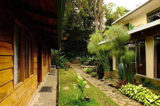 Quetzal Inn: environment