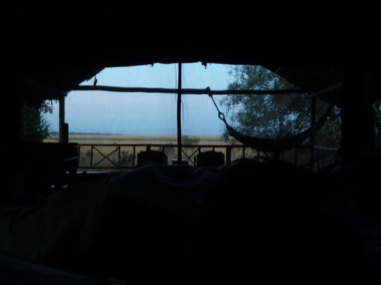 Katavi Wildlife Camp: Early morning view from  bed