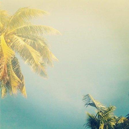 詩巫島度假村照片