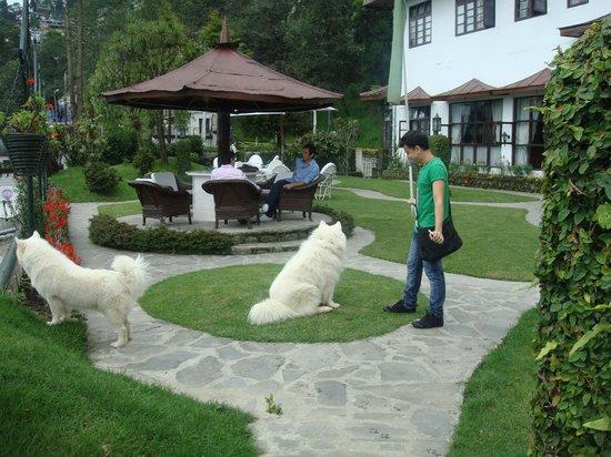 The Elgin Nor-Khill, Gangtok: Tom and Taquiila