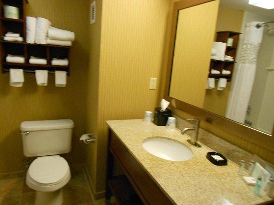 Hampton Inn Danville: Bathroom