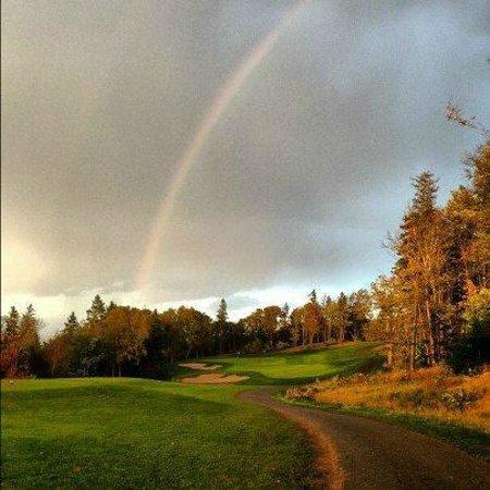 The Lakes Golf Club: hole 4
