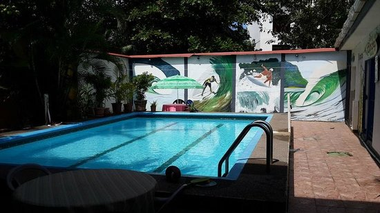 Hotel Kangaroo: Piscina impecable