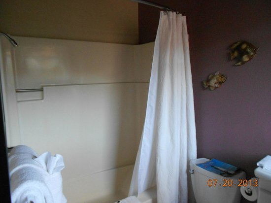 Embarcadero Resort Hotel : Shower