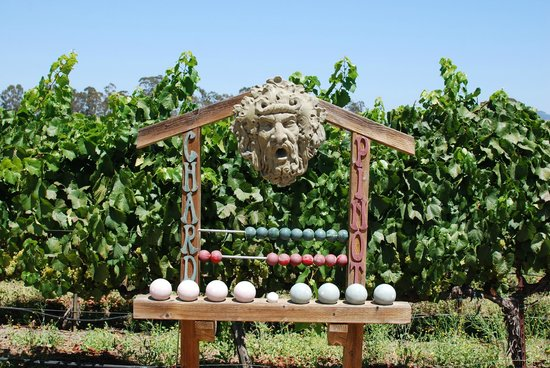 Ceja Vineyards: Bocce