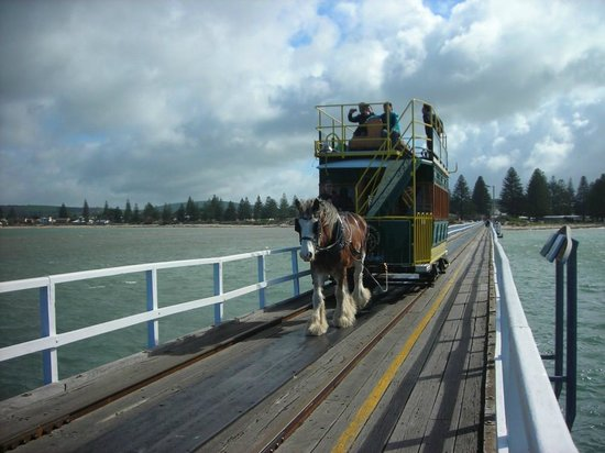 Port Elliot Holiday Park: Horse Drawn Tram to Granite Island