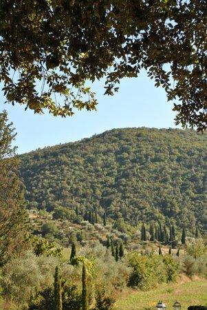 Villa di Piazzano: Sublime View