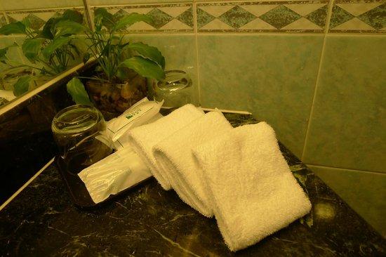 West Hotel: Bathroom amenities