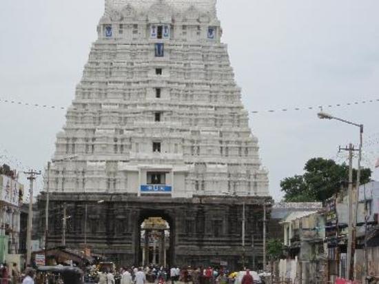 Kanchipuram: 1 Day Trip - 15 temples in Kanchipuram