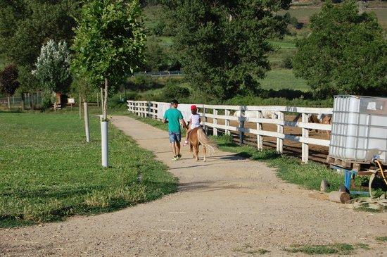 Cerdanya EcoResort : paseo en poni