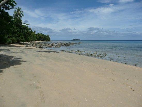 Lawaki Beach House: Low tide