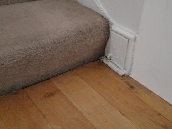 Mayflower Hotel: Dirty Carpet