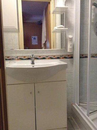 Comfort Inn Buckingham Palace Road: vasque
