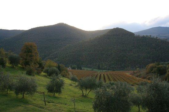 """Castello del Trebbio : View from """"La Sosta del Gusto"""""""