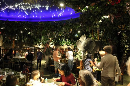 Rainforest Cafe England
