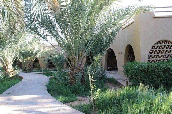 La Rose Du Desert : Les bungalows