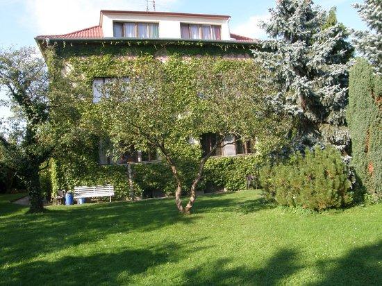 Penzion Sport: Garden view