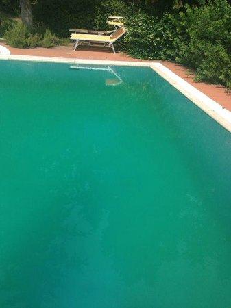 "Hotel Villa La Cappella: Poolboden ""so grün wie in der Karibik """