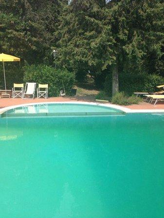Hotel Villa La Cappella: Grüne Algen am Poolboden