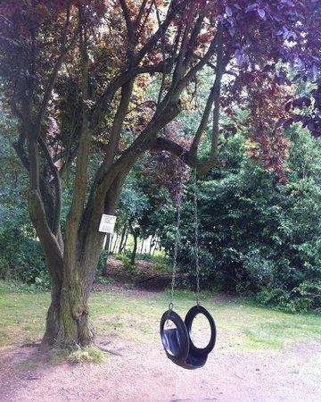 The Olde Bell Inn: Lovely swing for the children