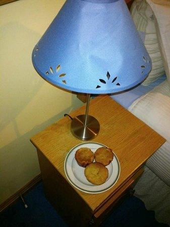 Tuar Beag: Muffin di benvenuto!