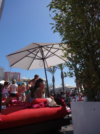 W Hollywood: view from the pool