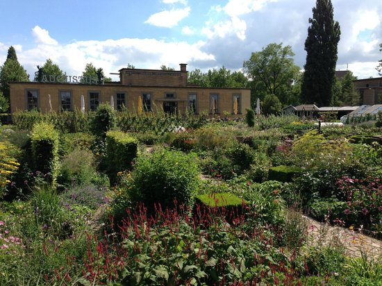 Villa Augustus : A walk through the garden - August, 2013