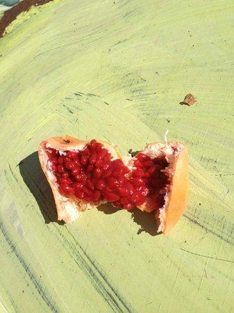 Casa Lora Bed & Breakfast: Passion Fruit dagli alberi di Casa Lora
